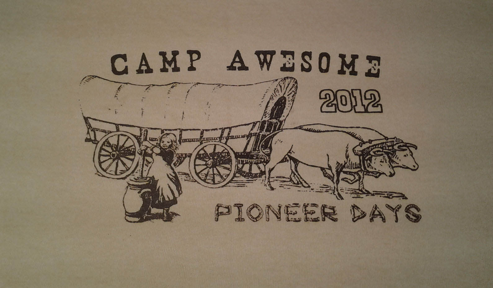 Camp Awesome Silkscreened T-Shirts