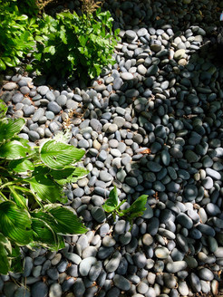 Pebbles are a great finish for a bed.