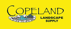 CLS Logo yellow.jpg