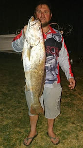 1st Mulloway on a grail