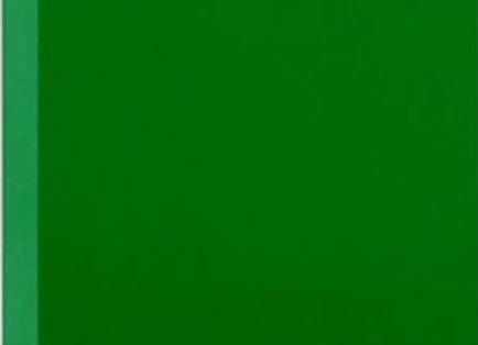 Libreta Verde Regular