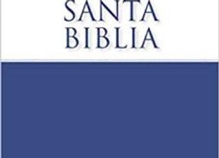 Biblia NVI Económica