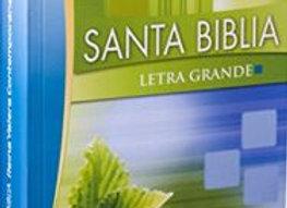 Biblia Reina Valera Contemporánea