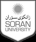 Soran University