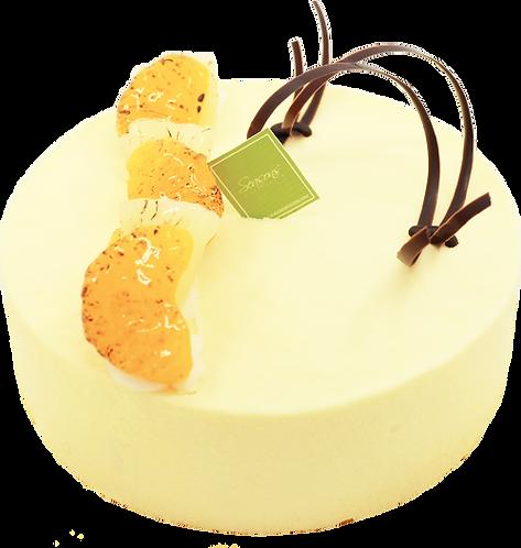 熱情果慕思蛋糕