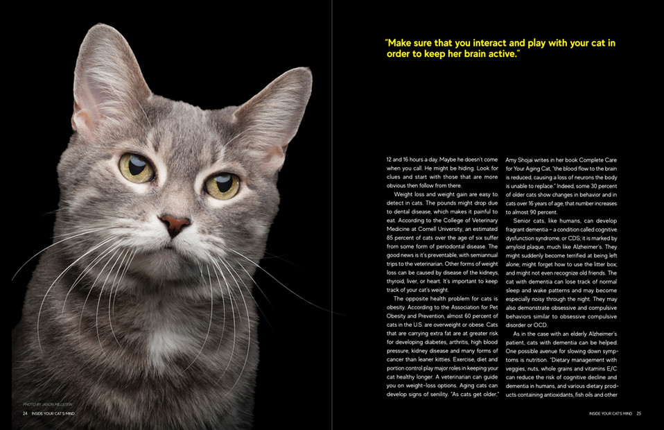 Updated Magazine Spreads2.jpg
