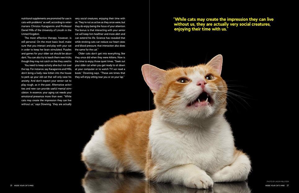 Updated Magazine Spreads3.jpg