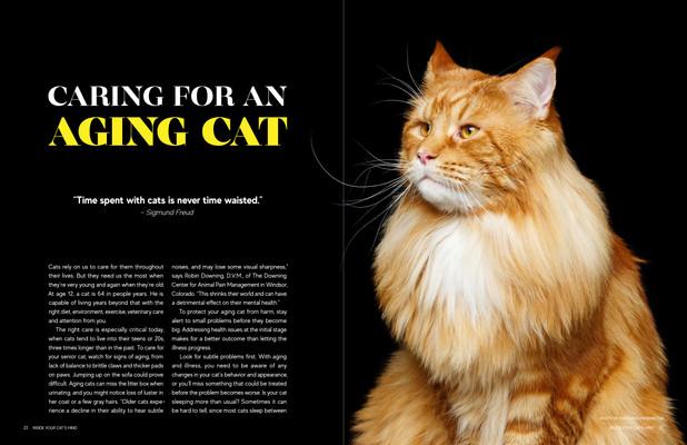 Updated Magazine Spreads.jpg