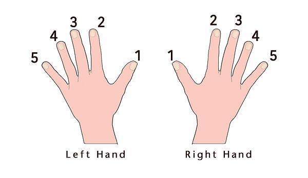Fingernumbers.jpg