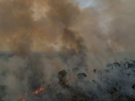 'Chaos, chaos, chaos': a journey through Bolsonaro's Amazon inferno