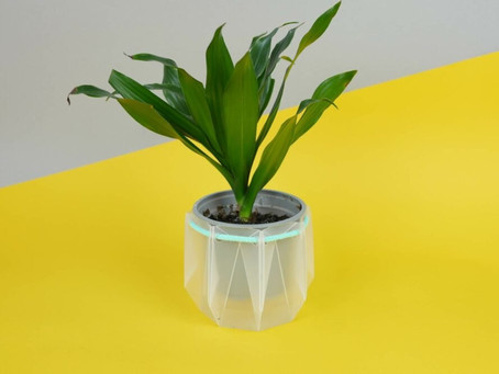Self-watering pots made from 100% recycled materials