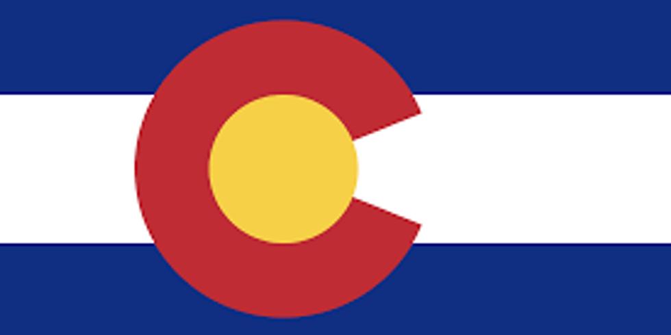 Lions in Colorado.