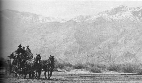 W1667515_3 - Stagecoach cropped.jpg