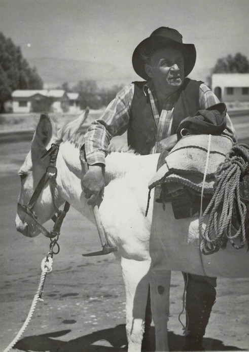 Cowboy with pack mule