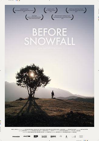До Того Как Выпадет Снег - постер.jpg