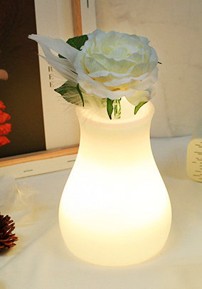 Lamp - Curve Vase