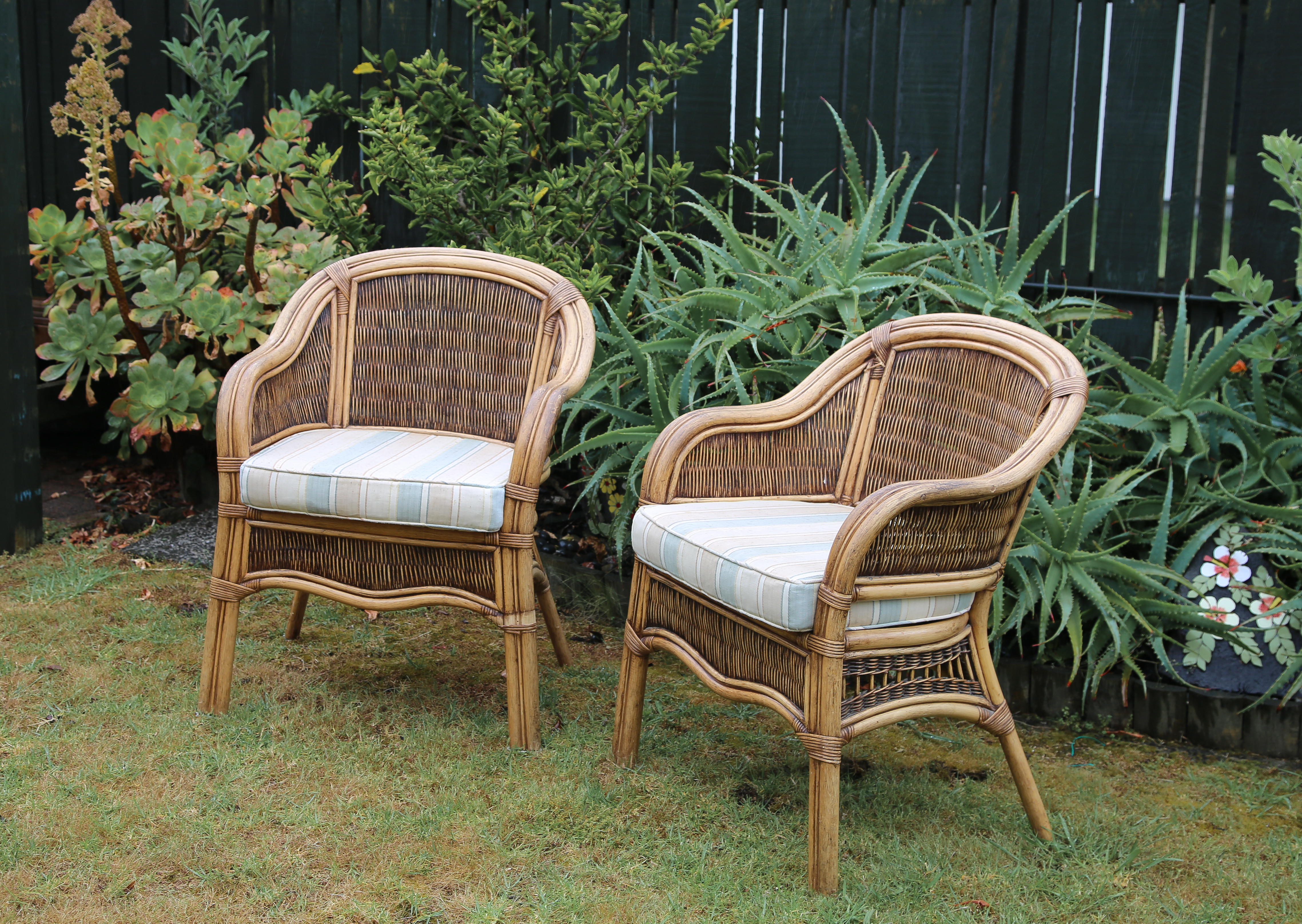 Cane chairs