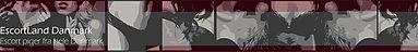 ELdk-banner-720x90-1.jpg
