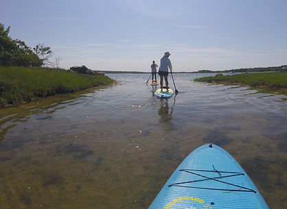 Menemsha Pond Standup Paddle Tour