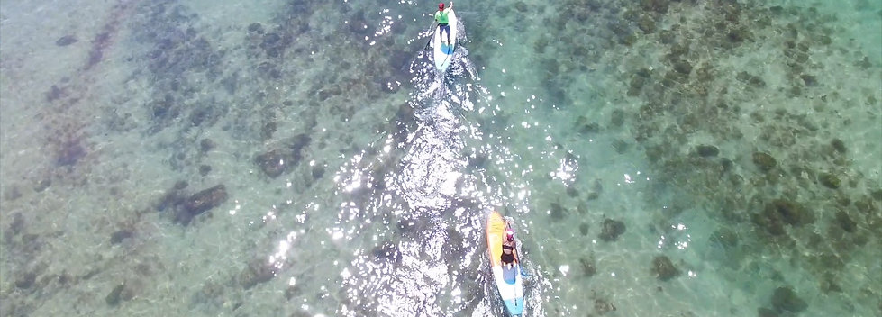GUIDED SUP SESSION PRIVATE - 1.5 HRS