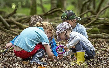 Forest-school-7_3520775b.jpg