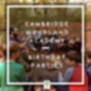 Copy of Birthday Partiesa.png