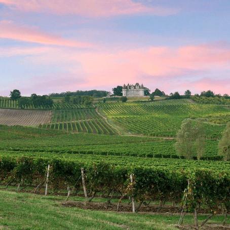 Monikkenwerk: de edelzoete wijn van Monbazillac