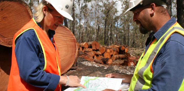 The Djarlma Plan (WA Forestry Industry Development Plan)