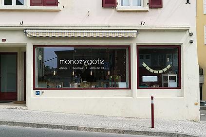 monozygote.jpg