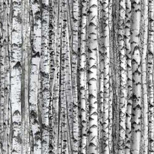 Grey Birch Trees Landscape Quilt Fabric