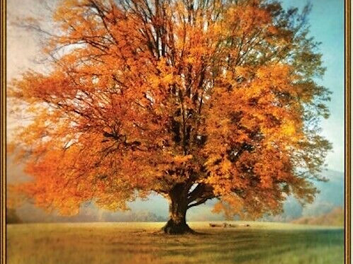Autumn Tree Fall Country Artworks Landscape Fabric Panel