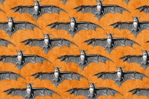 All Hallows Eve Spooky Bats Halloween Quilt Fabric