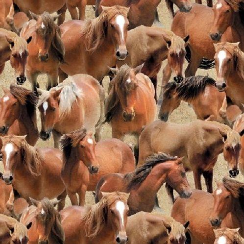 Greener Pastures Horses Quilt Fabric