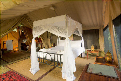 authentic safari experience in beautiful tents