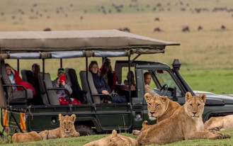 exciting adventures and stunning African sites