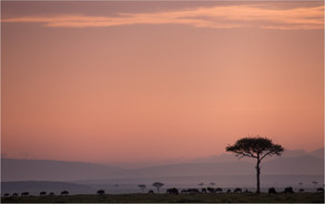 stunning African vistas