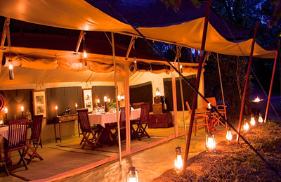 an authentic African safari experience with exceptional amenities