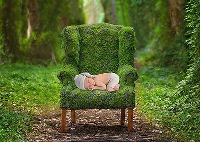 omar mossy chair (1).jpg