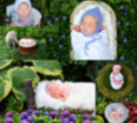 babies in the garden4.jpg