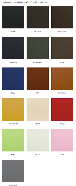leatherette swatches.jpg