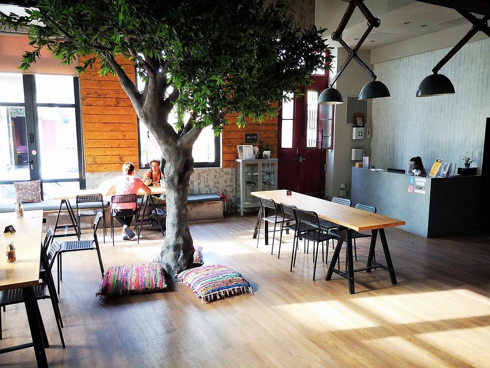 """Lounge im Hostel """"Bed Stations Athens"""", ein Baum steht inmitten des Zimmers"""