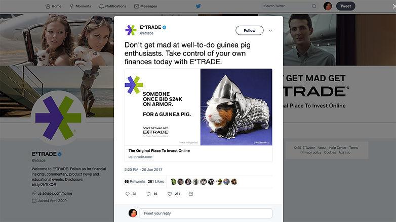 Guinea-Pig_Twitter.jpg