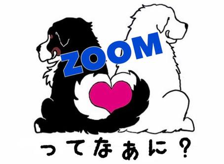 初の試み!ZOOMウェビナー開催とは!?