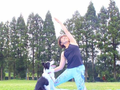 BJGP2020イベント紹介vol.1『ドッグヨガ/なますてWONE』
