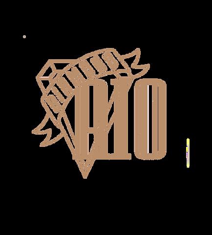 Diamond Rio Logo_edited.png