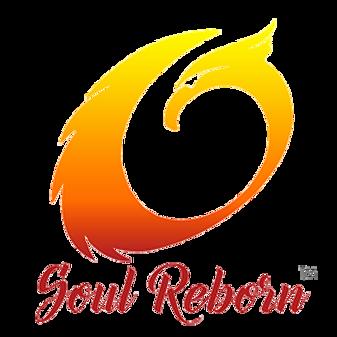 Soulweblogo.png
