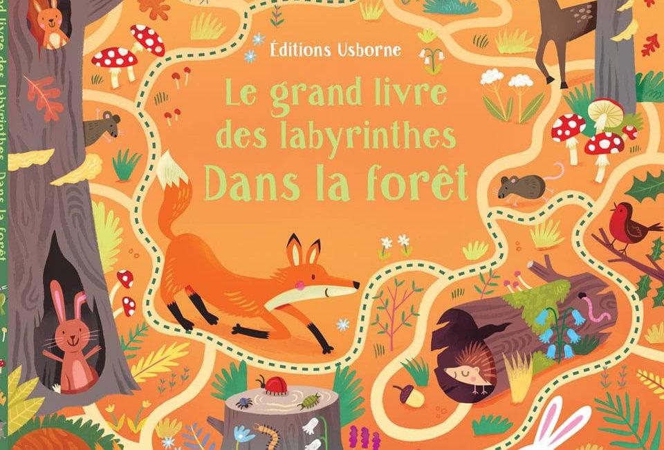 Le grand livre des labyrinthes