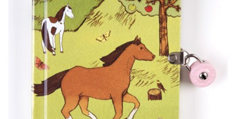 Journal intime amis des chevaux