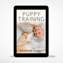 Puppy Training The Simple Way