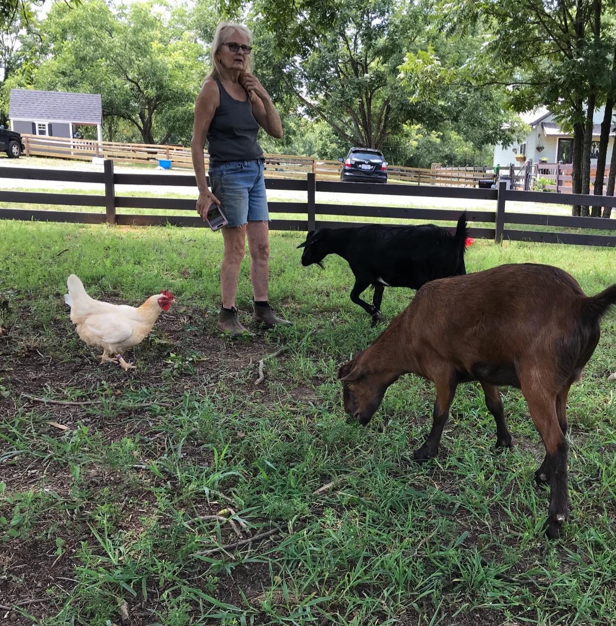 Carolyn, Buckey, Baker & a hen